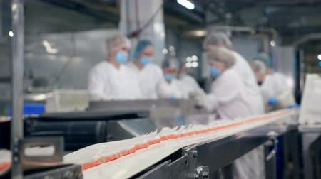 skillful : Factory conveyor belt with crab sticks moving along it Stock Footage