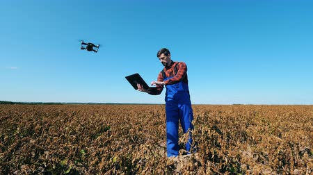 herbicides : Withered field and an agriscientist operating a drone Stock Footage