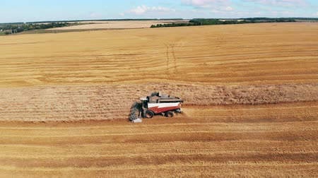 cutting open : Farming machine is reaping rye off the field