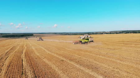 reaping : Grain is getting collected by the agricultural machinery Stock Footage