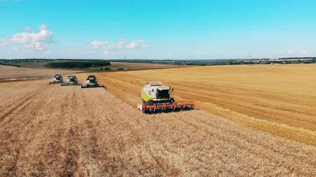 cutting open : Agricultural machines in the wheat field during harvesting Stock Footage