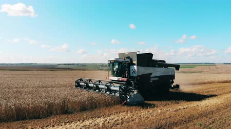 cutting open : Agricultural machine is reaping and collecting crops