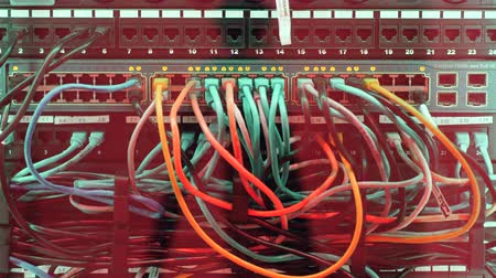 поставщик : Cables,wires, lights and connections on network server at data center. Стоковые видеозаписи