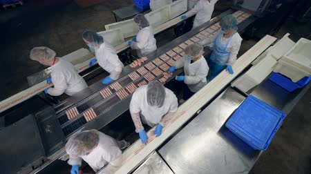 tayın : Top view of factory employees packaging fish snacks into plastic. Factory workers in protective clothing packing food. Stok Video