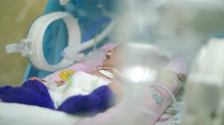 steril : Newborn baby in infant incubator at a hospital. Stok Video