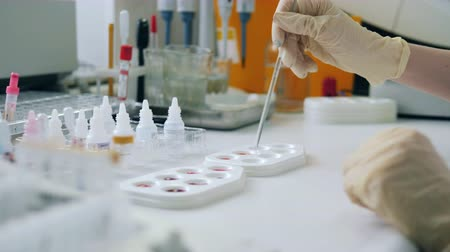 ラック : One laboratory worker tests samples on a pallete. 動画素材