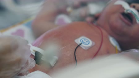 incubator : One newborn baby in infant incubator with tubes.