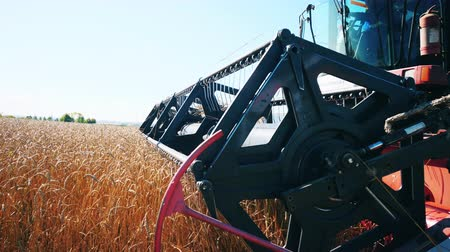 combinar : Reel of the moving harvester in a close up Stock Footage