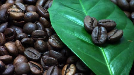 sifted : Coffee beans. Coffee tree leaves (Gently rotate). Stock Footage