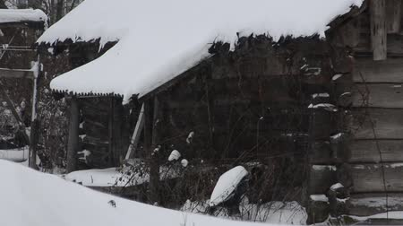 kavramsal : Heavy snowfall, an abandoned house Stok Video