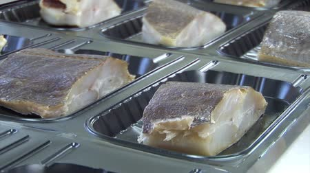 paket : Chopped fish on the assembly line. Vacuum packing fish Stok Video