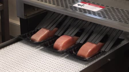 fishing industry : Vacuum packing red fish (trout, salmon, pink salmon). Seafood processing plant Stock Footage