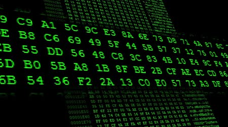 code : Green Hexadecimal code running up a computer screen. Green digits. Close-up shot. With the frame in the middle. Search for a specific code Stock Footage