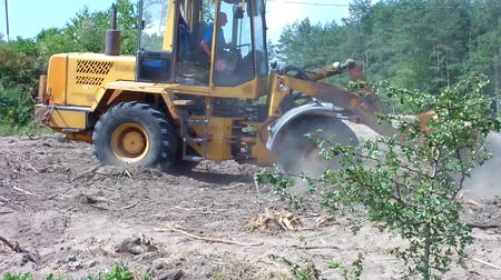 деревья : Tractor (bulldozer) clears the area of forest