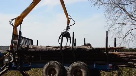 truck crane : Special cargo truck with crane unload logs from truck. Forest fell. Stock Footage