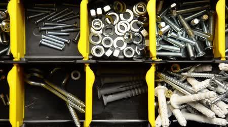 plastics : Screw and dowel in plastic organizer box. fasteners
