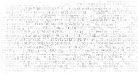 сканирование : Hexadecimal code running up a computer screen on white background. Blue digits. Стоковые видеозаписи