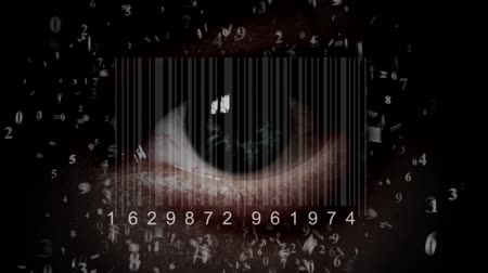 vizyon : human eye with integrated barcode in it. cyborg