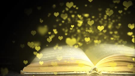 livros : The magic book. Favorite book. Book with angry. romantic book