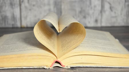 öykü : Concept of love for book
