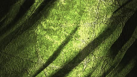 záložka : Grunge green moving background