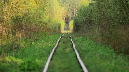 straight road : The old railway. Abandoned station. Overgrown pathways. Stock Footage