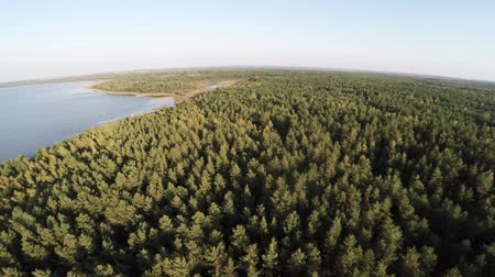 arquipélago : Aerial photography in the reserve in Belarus. Flying over the lake and forest