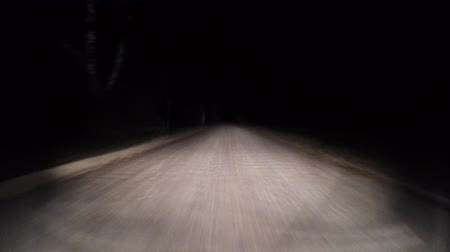 sepya : Night road. The road through the forest.