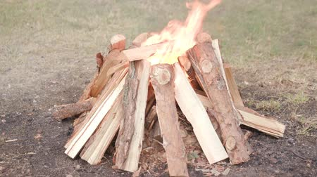 Make a big bonfire in the meadow. Beautiful bonfire made of wooden logs. Vídeos