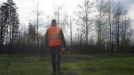 A man with a chainsaw and a signal vest comes into the forest