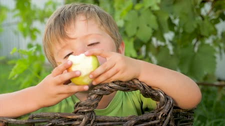 dois objetos : Boy eating apple outdoor. Apple eater in the basket.