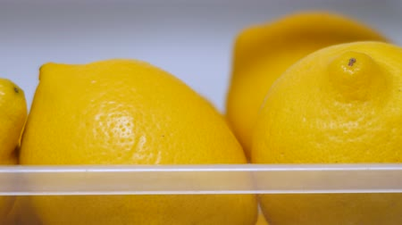 kept : Citrus fruits in refrigerator. Fresh yellow lemons in icebox. Vitamin C. Copy space. Lemons keep freshness in the fridge. Lemons ready to use. Healthy food concept. Organic food, fruits. Detox drink Stock Footage
