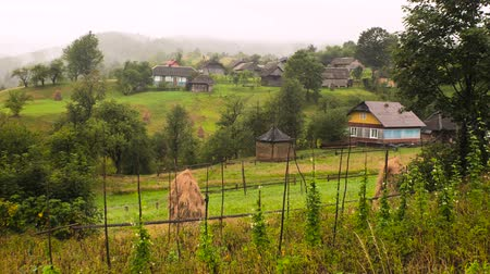 hay fields : Traditional village houses in mountain village. Typical rural scene. Summer in the village. Green fields and forests in mountain village. Ukrainian traditional landscape, old traditional hay stacks