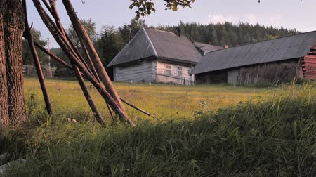 без городского : Non urban scene. Rural background. Old village houses on green grass background. Summer in the village. Back yard, front yard of household. Small business hens on back yard. Стоковые видеозаписи