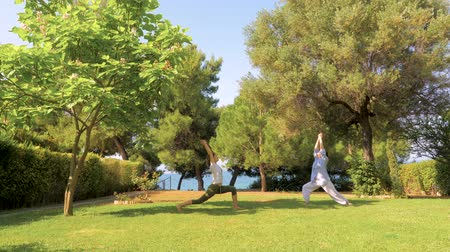 sustain : Elder mother with adult daughter doing yoga. Two females different age doing yoga pose on front yard, backyard. Doing morning exercises with trees and blue sky on background