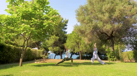 sustain : Two women doing yoga warrior pose. Slowing down the aging process by doing yoga. Healthy lifestyle. Strong body concept. Happiness concept. Happy mother with daughter spending time outdoor Stock Footage