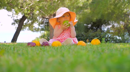 fejleszt : Organic fruits background. Kid eating organic apple in park. Child in panama having fun outdoor on back yard. Happy childhood concept. Toddler sitting on green grass waiting for mother.