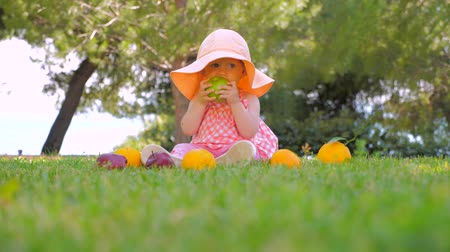 апельсины : Little princess playing with fruits outdoor. Happy childhood concept. Toddler sitting on green grass waiting for mother. Girl in panama playing with oranges and apples Стоковые видеозаписи