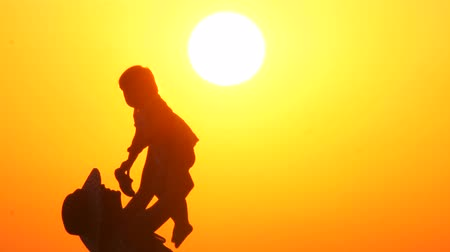 sezgi : Silhouette of a happy mother on vacation holding his daughter in the air on the beach during sunset time. Mothers Day. The only child in family. Single parent family. Two people on nature. Family day
