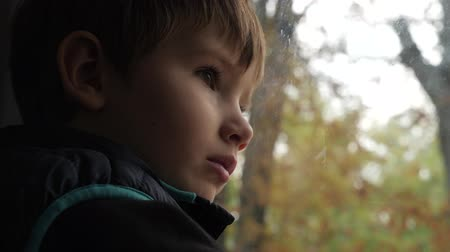 Young tourist travels by train. Caucasian boy with brown eyes looking on the trees growing on sidewalk. Facial expression background. Child emotions.