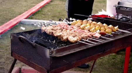 kebab : Family barbecue party in park, father grilling meat on charcoal, weekend holiday