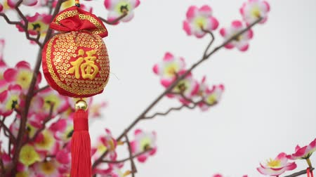 китайский новый год : Traditional Chinese new year decor with character Fu which means Blessing  Good Luck hanging on blossom tree. Wind is blowing. Стоковые видеозаписи