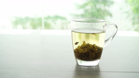 bule : Brewing Jasmine tea cube in hot water, footage video.