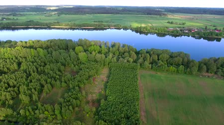 rzeka : aerial view of river in green fields Wideo