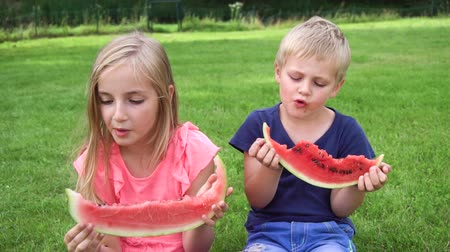 quintal : kids eating watermelon outdoors Vídeos