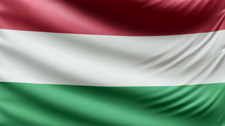 hymn : Realistic beautiful Hungary flag looping Slow 4k resolution Stock Footage