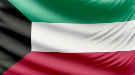 капитал : Realistic beautiful Kuwait flag 4k