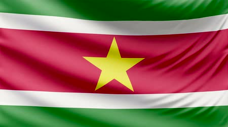 hymn : Realistic beautiful Suriname flag 4k Stock Footage