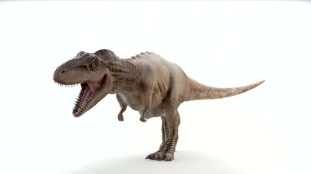 dinozaury : Tyrannosaurus Rex in motion of attack Wideo