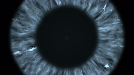 ver : The gray eye is an extreme close-up of the iris and pupil, widening and tapering.